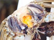 市民购买推销的螃蟹 蒸熟发现只剩空壳
