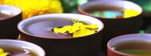 菊花茶的功效與作用有哪些