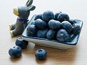 研究 吃蓝莓有助于预防心血管疾病