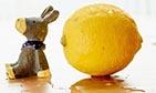 柠檬汁能控制血糖