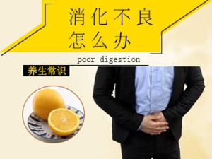 消化不「良怎么办 常吃橙子竟有这个作用