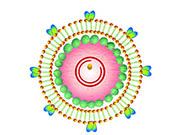 将组建国际专家组研究病毒起源问题