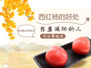 西红柿的好处 想要减肥的人可以常吃它