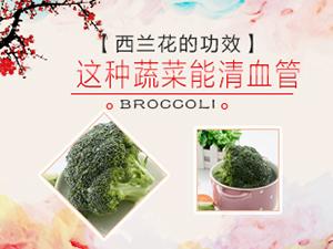 西兰花的功效 这种蔬菜能清血管
