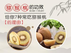 獼猴桃的功效 給你7種常吃獼猴桃的理由