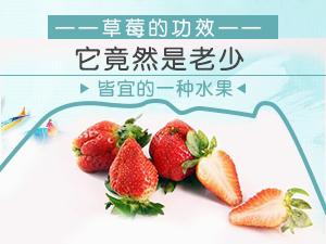 草莓的功效 难怪它是老少皆宜的水果