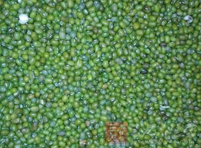 绿豆中含有多糖成份能增加血清脂蛋白酶的活性