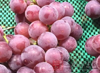 葡萄籽的抗氧化效果不但是维生素C的20倍