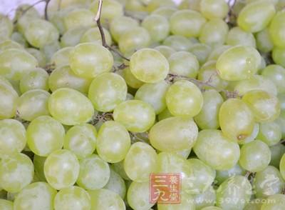 青色葡萄成熟以后也可能变为紫葡萄