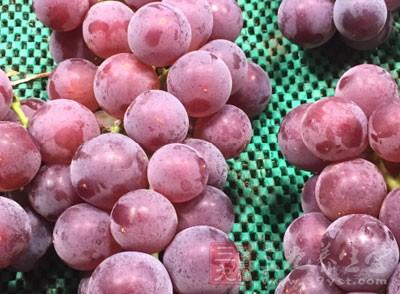 唯一的小缺点是热量有点高,40颗葡萄相当于2个苹果的热量