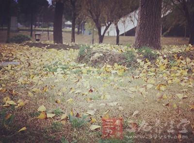 秋分节气养生 秋分时节应注意八大养生原则