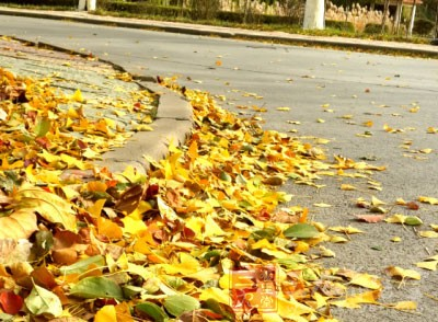 秋季健康养生小常识 秋季这样养生好