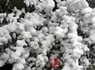 小雪节气 带你了解这个节气的四大习俗
