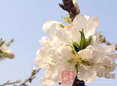 立春是什么意思 立春要知道这些