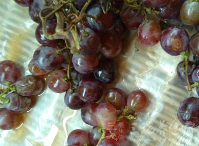葡萄多酚具有极高的抗氧化功能