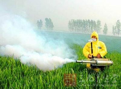 襄阳市将试行农药处方制 从源头保食品安全