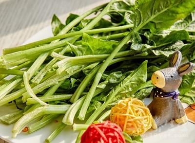 春食菠菜 这样吃菠菜才最健康