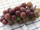 吃葡萄有什么好处